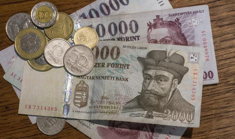 Resultado de imagen de florin moneda y billete