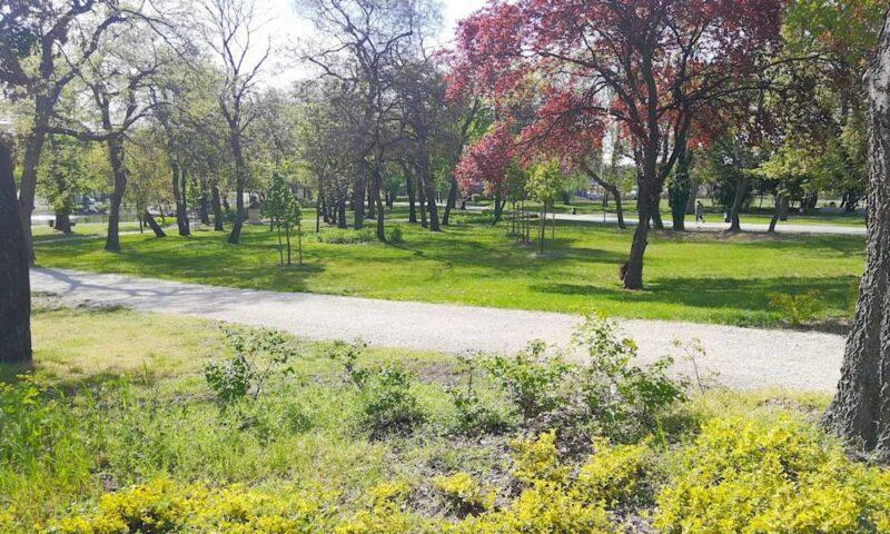 Orczy Park